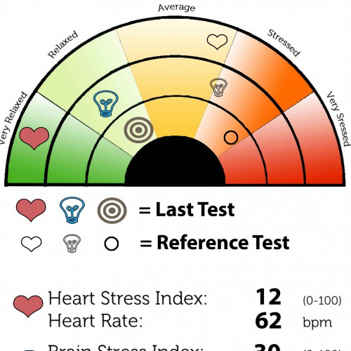 Stress Test Your Portfolio: V1bes Wearable Wireless Sensor Is For Stress, Fun And